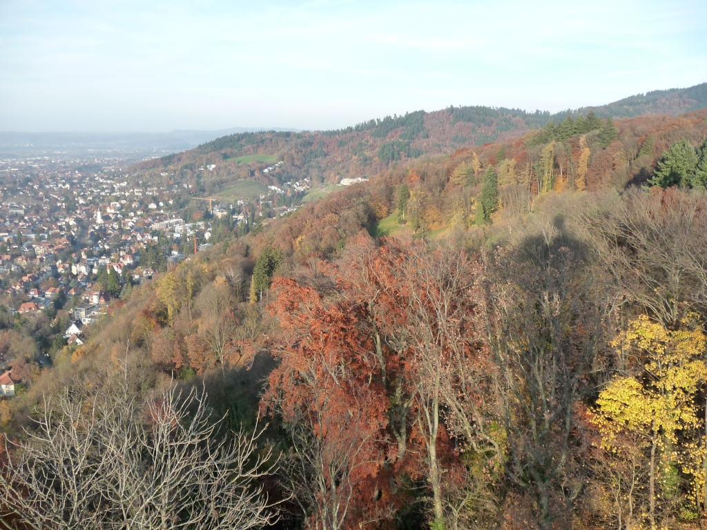 Freiburg, a beautiful city in the hills of the Black Forest